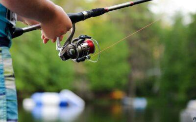 Den perfekte fiskestang